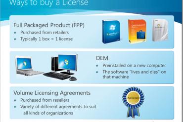 Các hình thức cấp phép - License của Microsoft