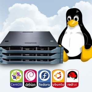 Linux VPS #1